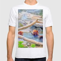 Wild Bears Mens Fitted Tee Ash Grey SMALL