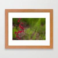 Fleur #3 Framed Art Print