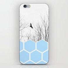 Volute iPhone & iPod Skin