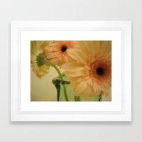 baby-pink daisy-petals ~ flowers Framed Art Print