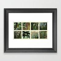 Alpine Rainforest Framed Art Print