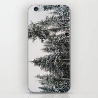 Snowy Paradise iPhone & iPod Skin