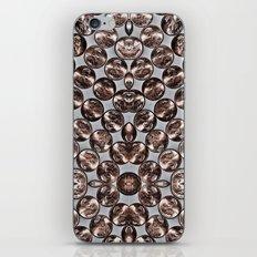 Pennies iPhone & iPod Skin