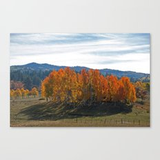Promise of Winter's Coming Canvas Print