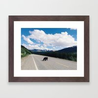 Black Bear Crossing Framed Art Print