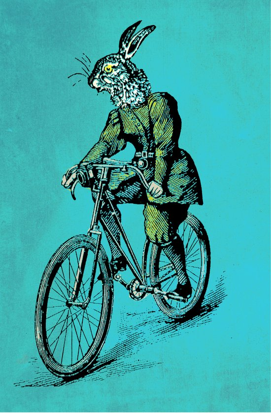 The Bicycle Bunny Canvas Print