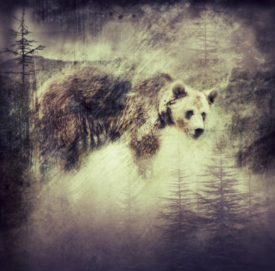 """Forest bear"" Art Print"