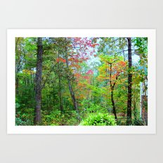 Magical Forrest Art Print