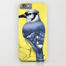 Blue Jay iPhone 6s Slim Case