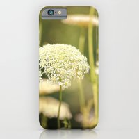 iPhone & iPod Case featuring Gently by Karol Livote