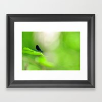 Blue Damsel And The Lime… Framed Art Print