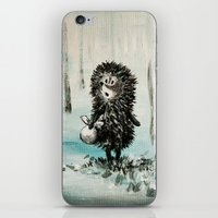 Hedgehog in the fog iPhone & iPod Skin