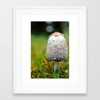 Fluffy mushroom Framed Art Print