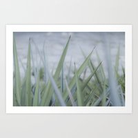 Peaceful Summer gift Art Print