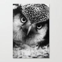 Owl series no.6 Canvas Print