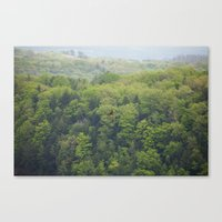 Flying Above the Tree Tops - Spring Trees  Canvas Print