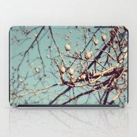 Mountain Nature iPad Case