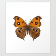 Art Print featuring *Butterfly*** by Mr And Mrs Quirynen