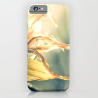 iPhone & iPod Case featuring Tranquil by Nicole Rae