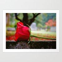 Cemetery rose Art Print