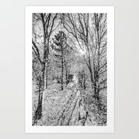 The Forest Path Snow Art Print