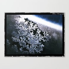 Frosted Window Canvas Print