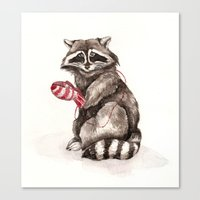 Pensive Raccoon In Red M… Canvas Print