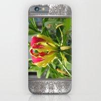 Gloriosa Rothschelidiana iPhone 6 Slim Case