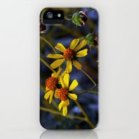 iPhone 5s & iPhone 5 Cases featuring Backyard Beauty - Strough Canyon Park 002 by Lon Casler Bixby