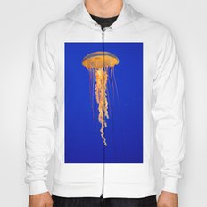 He moves from point to point with as little uproar as a jellyfish. --Plum Hoody