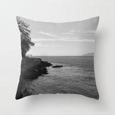 castaway Throw Pillow