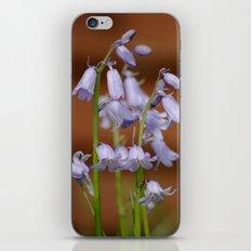 Spanish Bluebells iPhone & iPod Skin
