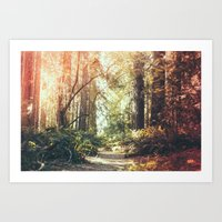 Beautiful California Red… Art Print