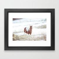 Snow + Horse Framed Art Print