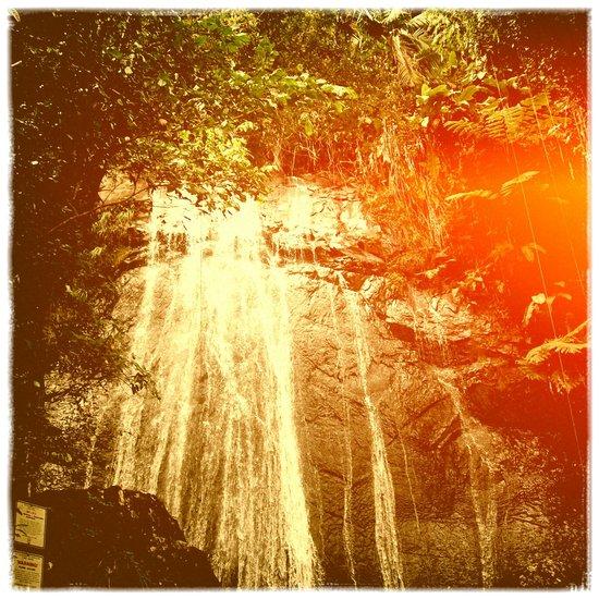 The Waterfall Art Print
