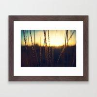 Prairie Sun Framed Art Print