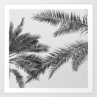 simply palm leaves Art Print