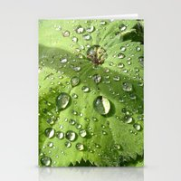 Alchemilla Stationery Cards