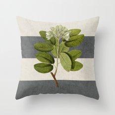 Botanical Stripes 5 -gra… Throw Pillow