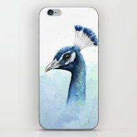 Peacock Watercolor iPhone & iPod Skin
