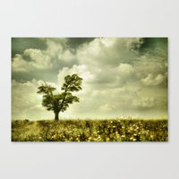 Summer Moodiness Canvas Print