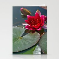 Red Waterlily Stationery Cards