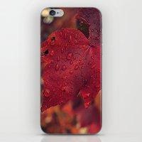 Fall Drops II  iPhone & iPod Skin
