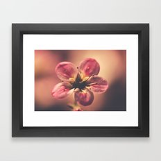 Dramatic Framed Art Print
