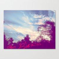 Sun Bleached Canvas Print
