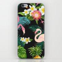 Flamingo Dance iPhone & iPod Skin