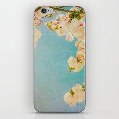 Miami Summer iPhone & iPod Skin