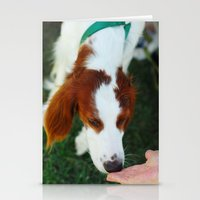 Greet Stationery Cards