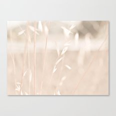 Plain Canvas Print