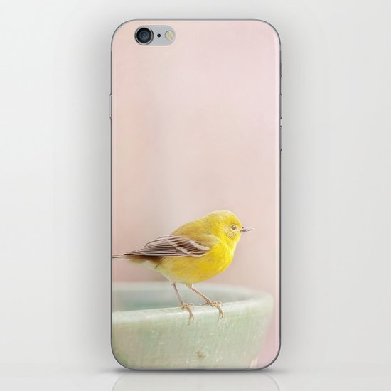 Little Pine Warbler iPhone & iPod Skin